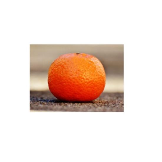 Mandarinky větší 0l